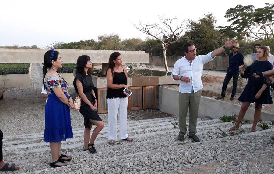 Impulsa gobierno y fundaci n casa wabi preservaci n de for Viveros en oaxaca